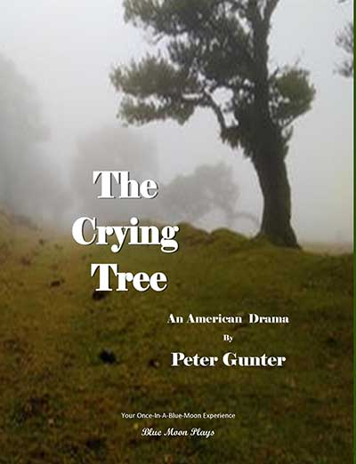 the crying tree play about slavery book cover