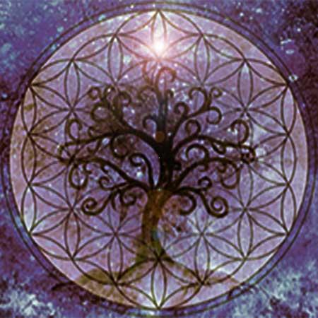 image of the tree of life for spiritual drama
