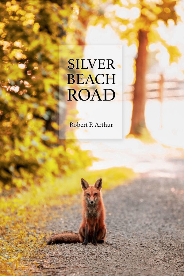 silver beach road spoken word, drama book cover