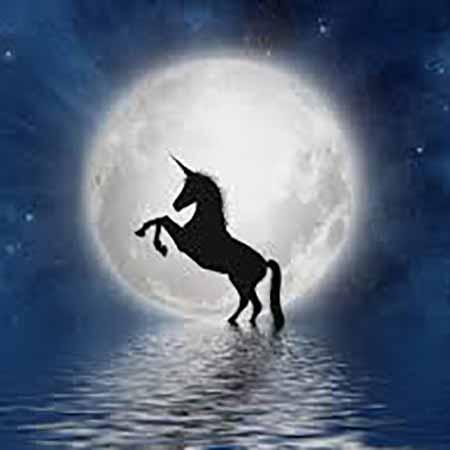 unicorn bay press logo